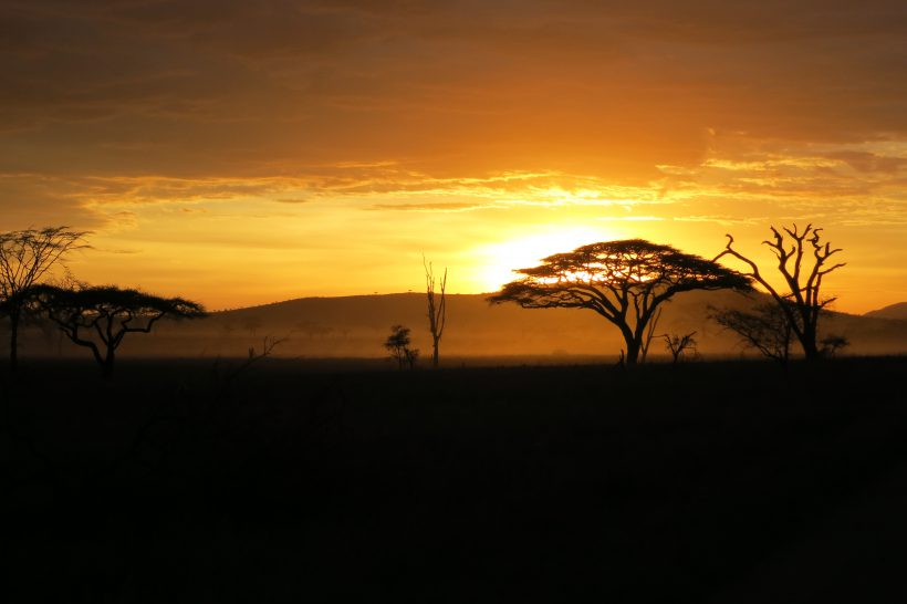 Serengeti 6 Sunset