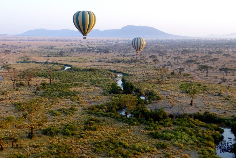 Serengeti 5 Balloon Safari